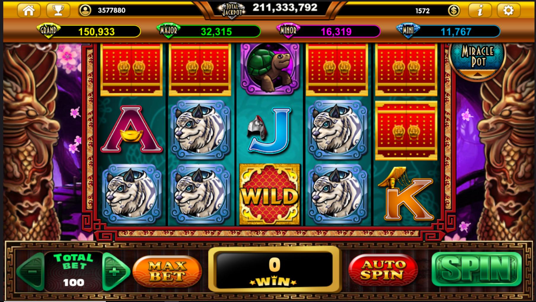 Lotto de 24